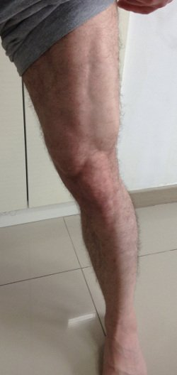 muscle gaining secrets 2.0 review-legs