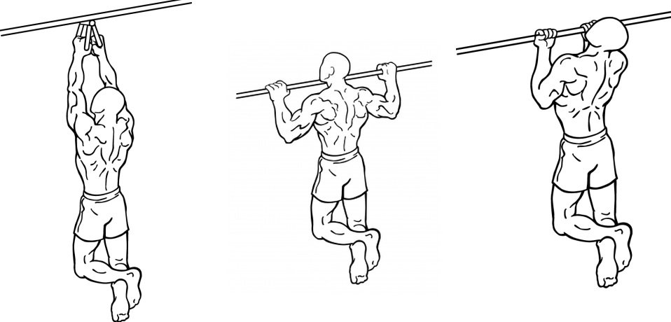 Wide Grip Pull-Ups, Regular Pull-Ups or Narrow Grip Pull ...